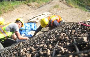 Способы укрепление берегов и склонов